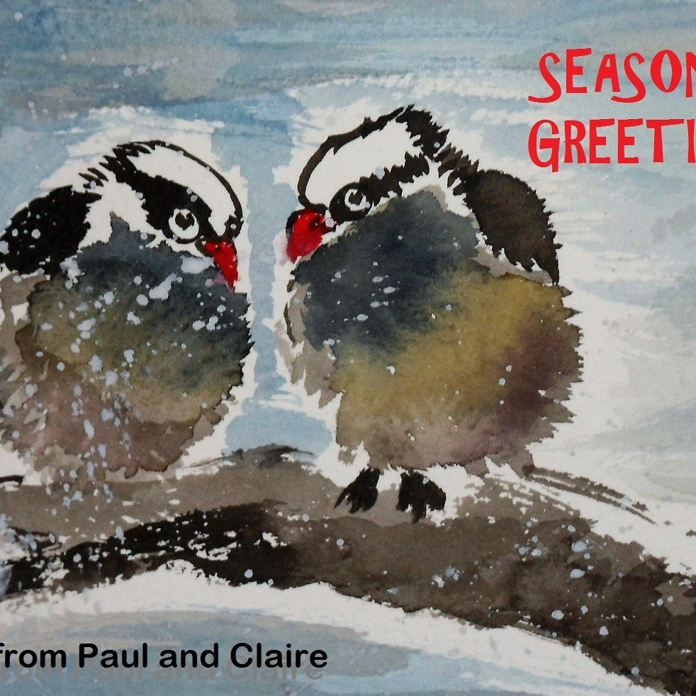 Winter birds by Claire Seaton
