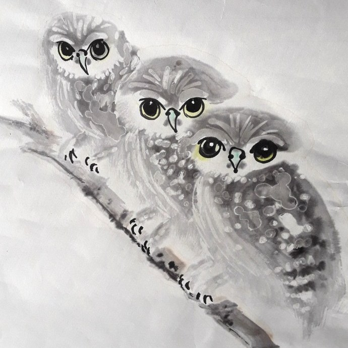 3 owls by Claire Seaton 2017