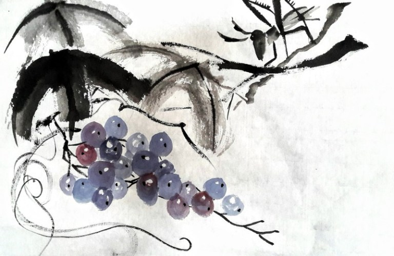 Grapes and grasshopper by Claire Seaton