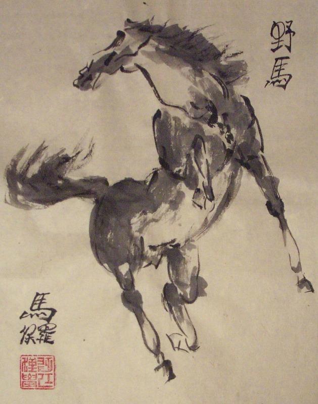 Wild Horse by Paul Maslowski 2007