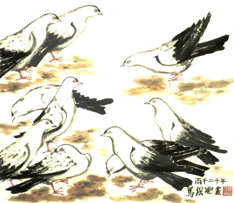 Pigeons after Wu Zuoren by Paul Maslowski 2020