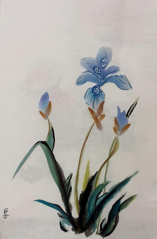 2020-09-27 Blue Iris 2020