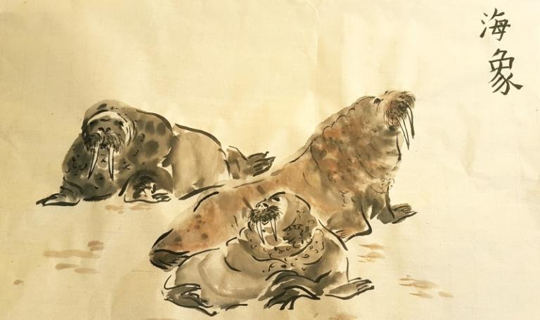 Walruses - Kim Ashburner 2021